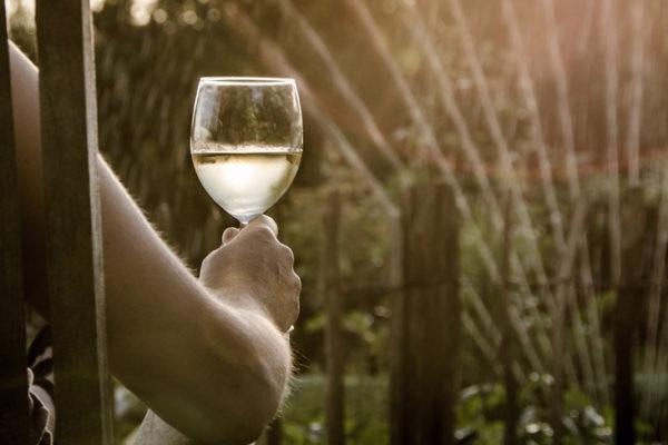 temperatura del vi a l'estiu