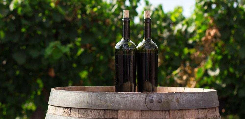 ¿Habéis intentado alguna vez darle un puntito de frescor a un vino tinto joven en pleno verano? ¿Y cuál fue el resultado? Bastante bueno, ¿verdad?